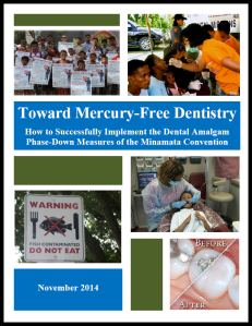 Toward Mercury-Free Dentistry image