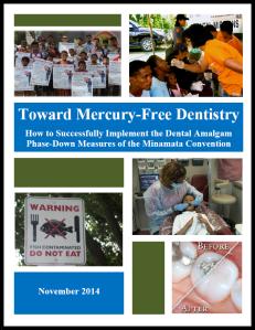 Toward Mercury-Free Dentistry image